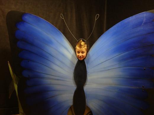 "moj ""plavi leptir"""