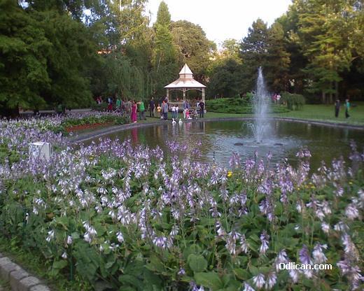 Dunavski park, Novi Sad